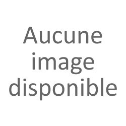 Sikhote Alin Météorite / 31,68 g / Orientée